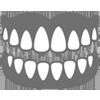 dentalbasics